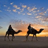 Royal Rajasthan - Group Tour