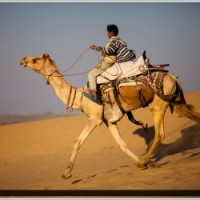 Desert Rajasthan - Group Tour